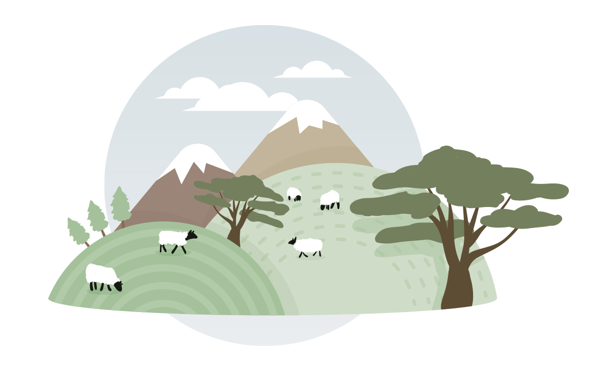 Sheep among hills and mountains grazing.